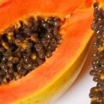 Papaya Seeds to treat Kidney failure, Parasites, Cirrhosis, Over Weight, etc.