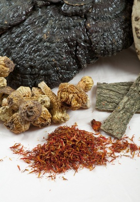 Assortment Of Chinese Herb