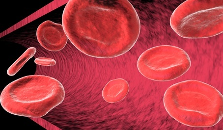 Blood cells in artery: Blood Type